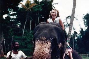 Dot elephant India 1955